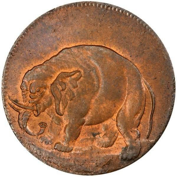 Elephant tv0675415a